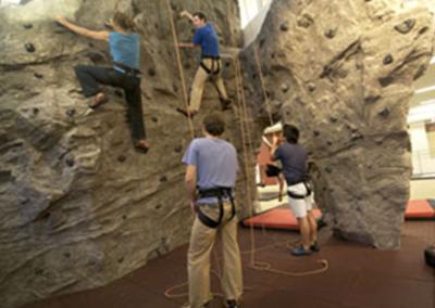 Custom Climbing Wall 1