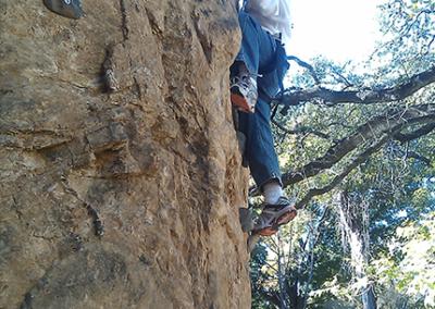 Custom Climbing Wall 11