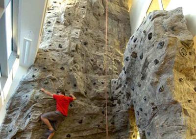 Custom Climbing Wall 14
