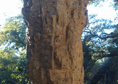 Custom Climbing Wall 18