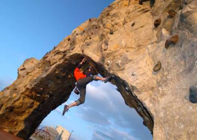 Custom Climbing Wall 9